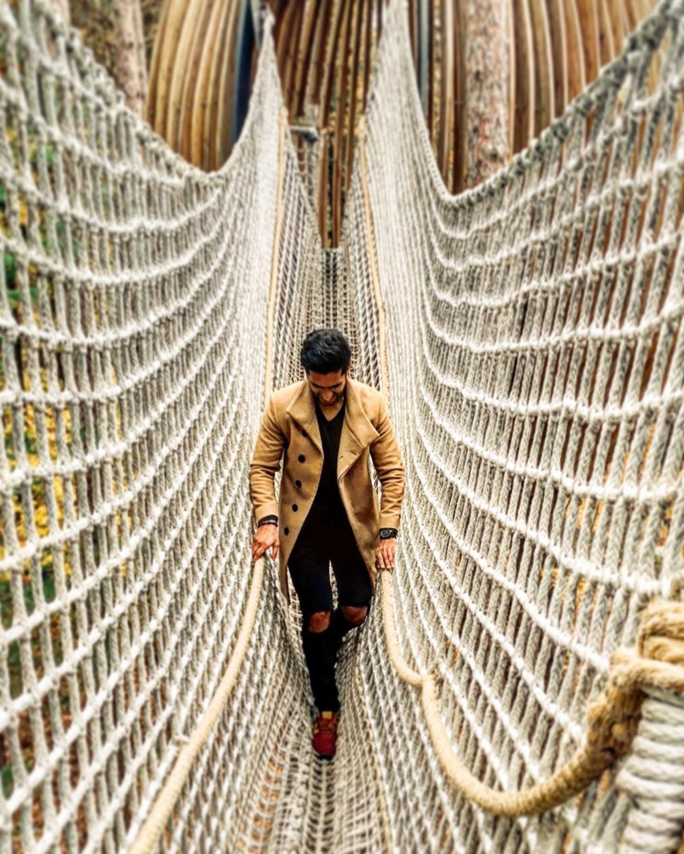 在陶氏花园林冠大道的怀廷森林里,一名男子正俯视着下面的森林地板,他正穿过货物网桥