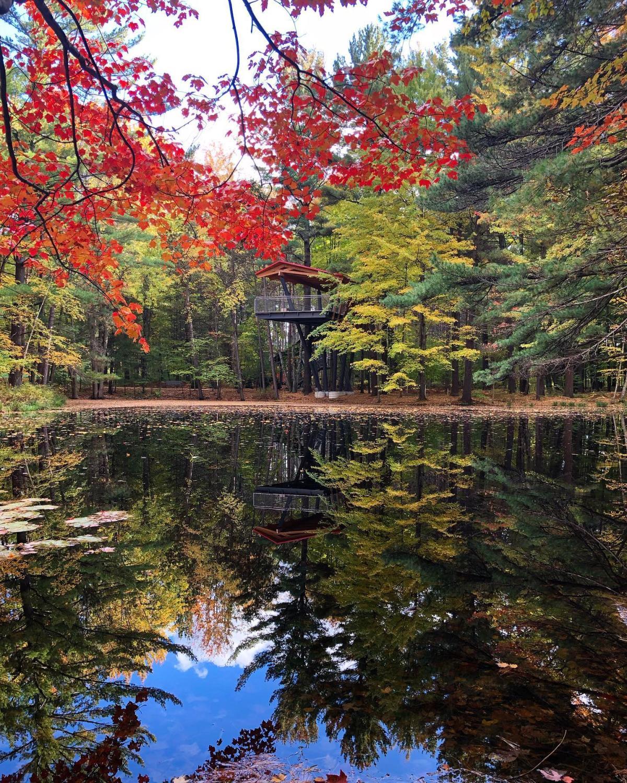 秋天的颜色围绕在米德兰陶氏花园怀廷森林林荫道的池塘边