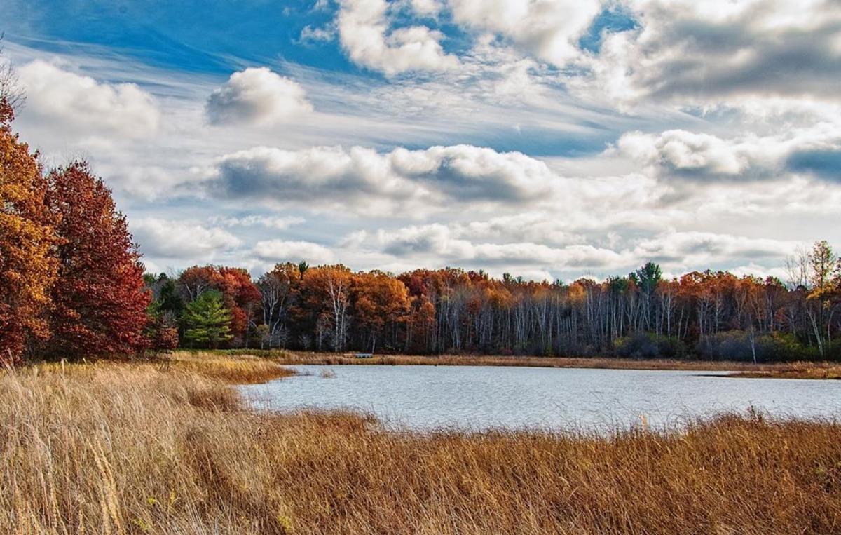 密苏里州米德兰市齐佩瓦自然中心湿地周围的秋色