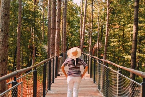 UGC-陶氏花园白丁森林