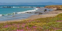 Nature Conservancy – Santa Cruz Island Preserve