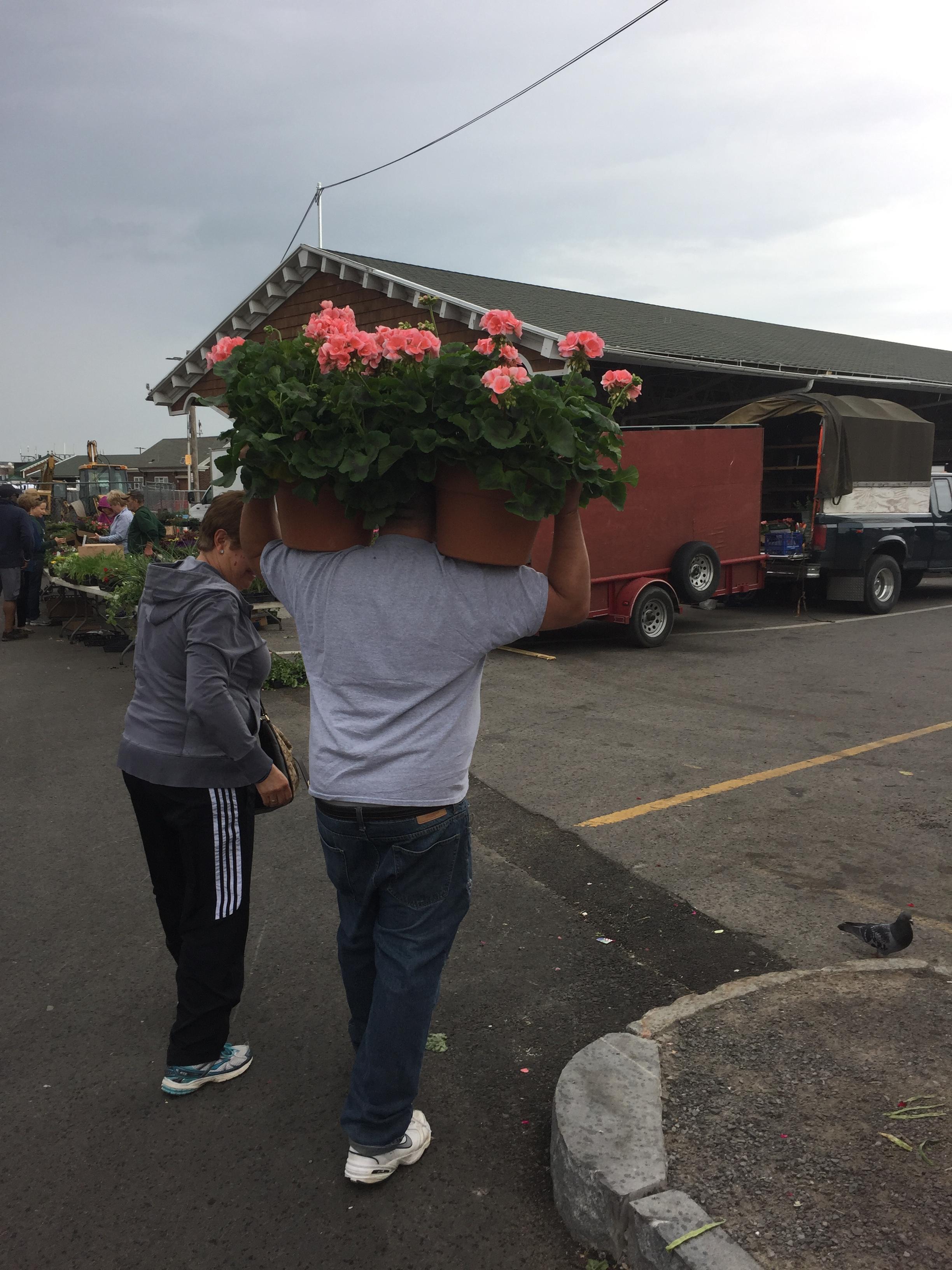 ae6ddf57146b Flower City Days at the Market