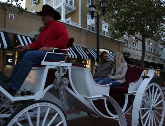 The Market Common Complimentary Valentine's Day Carriage Rides