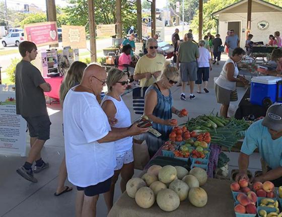 North Myrtle Beach Farmer's Market