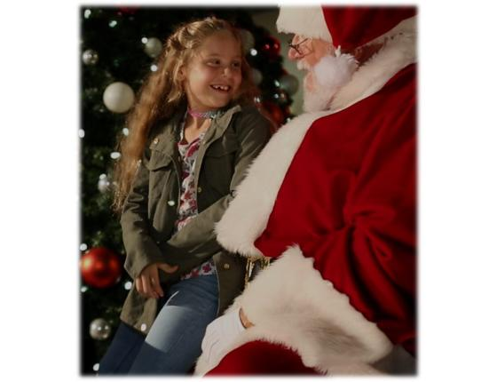 Complimentary Photo Op with Santa for Kids or Pets