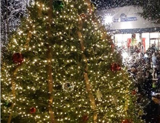 2019 Rivertown Christmas Celebration and Tree Lighting