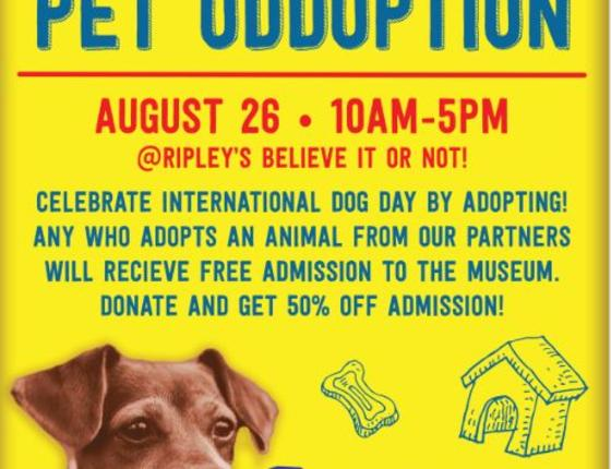 Ripley's Believe It or Not Pet Oddoption