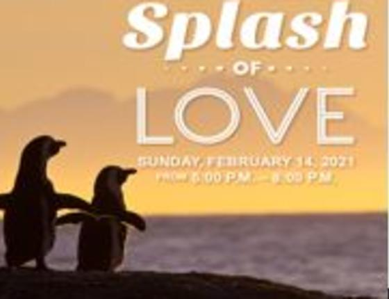 Splash of Love at Ripley's Aquarium