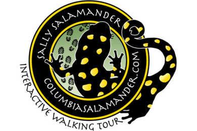 Sally Salamander