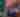 Virtual Fenway Park Tour