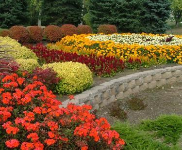 NEW Boulevard Flower Gardens