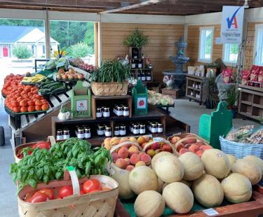 hanover veggie farm