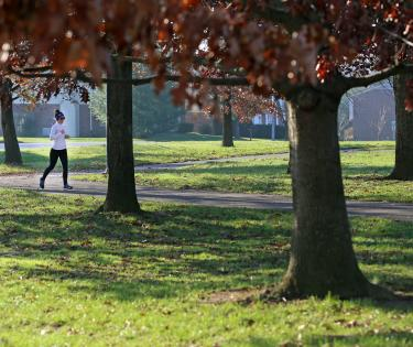 Kirklevington Park