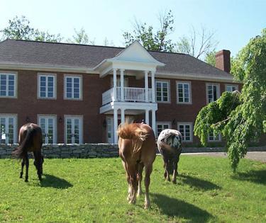 Fairyhouse Hall