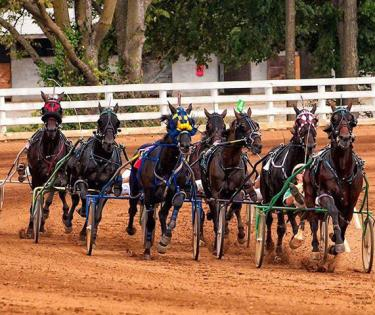Red Mile Track