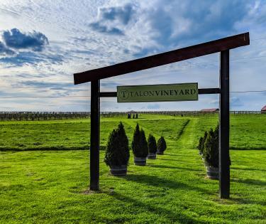 Talon Winery Sign