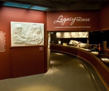 International Museum of the Horse: Lexington, KY