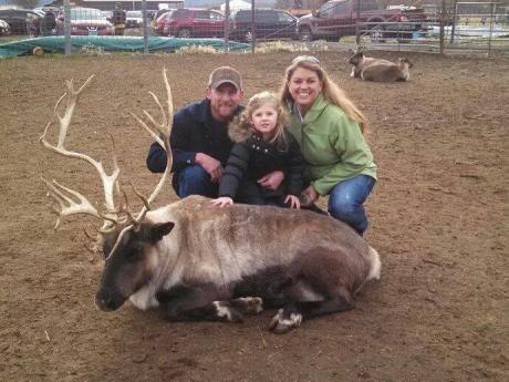 Reindeer Farm 1