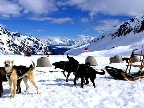 Glacier dogs