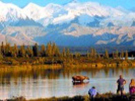Alaska Denali Tours