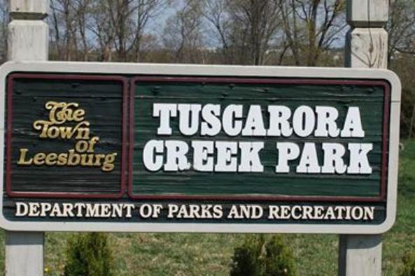 12287_6593_tuscarora creek.JPG