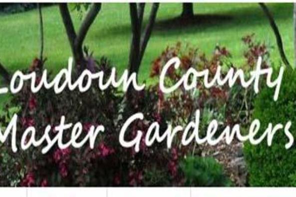 75902_6495_gardener.JPG