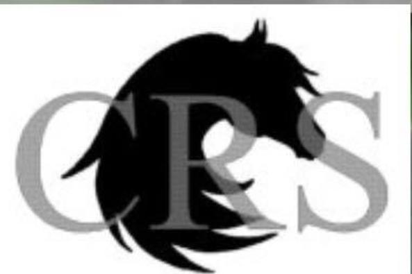 Chase Run Logo