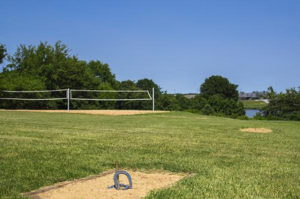 Volleyball and Horseshoes
