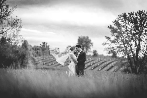vineyard black and white