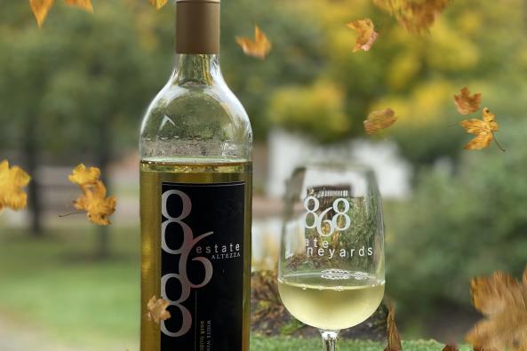 868 in Autumn