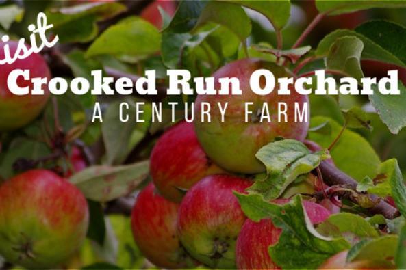 Crooked Run Orchard Logo