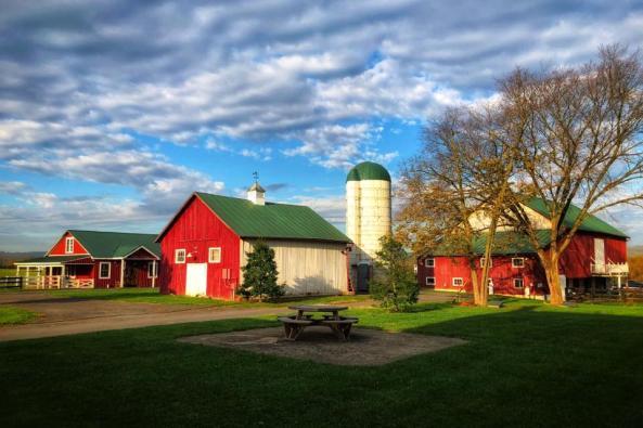 faith like a mustard seed image barn