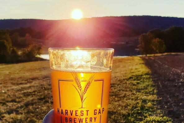 Harvest Gap Brewery Image
