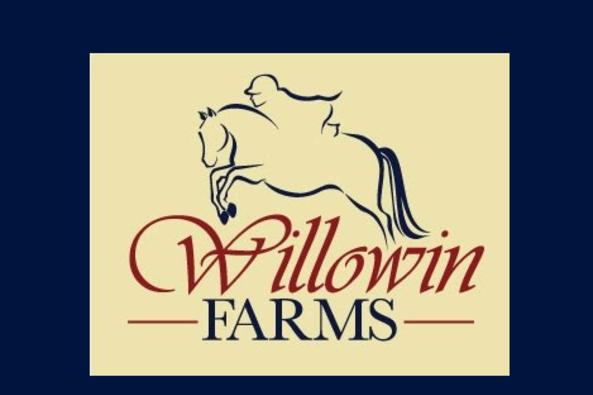 Willowin