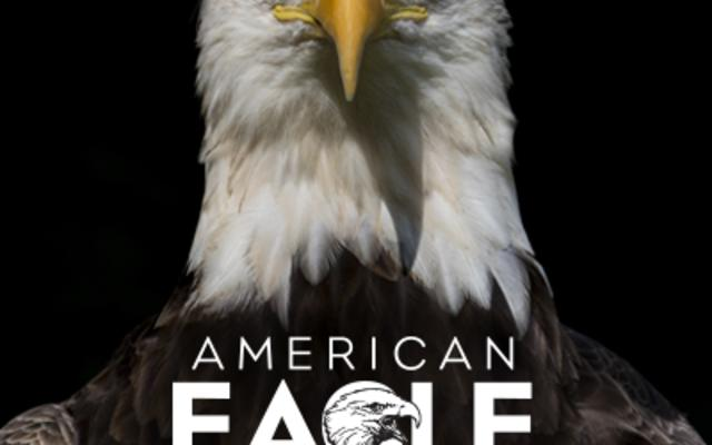 American Eagle Foundation