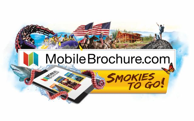 Brochure Distribution Services