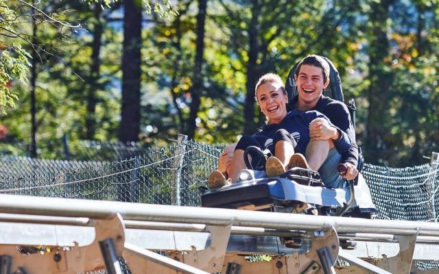 Rowdy Bear Mountain Coaster