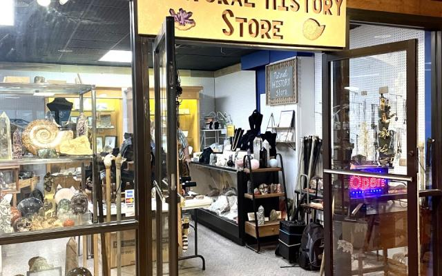 The Natural History Store
