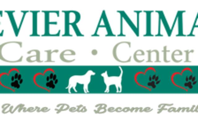 Sevier Animal Care