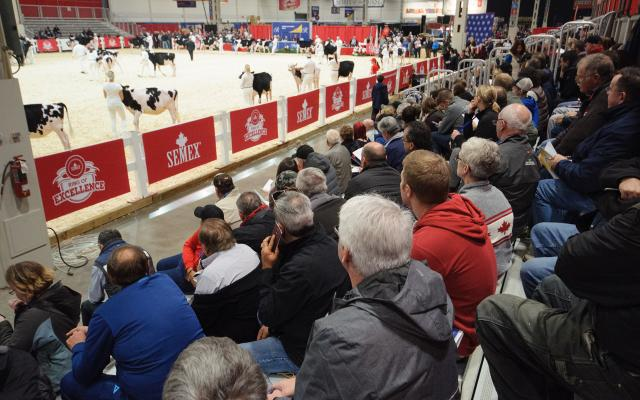 Agriculture competition at The Royal