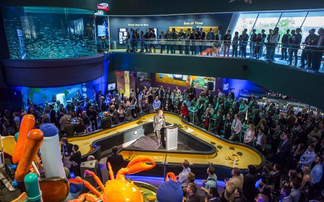 Ripley's Aquarium - Events