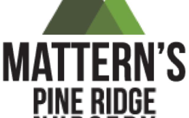 Mattern's Pine Ridge Nursery Logo