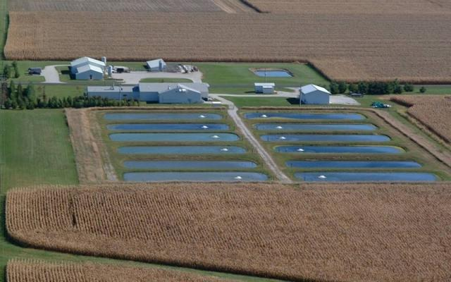 Purdue Aquaculture