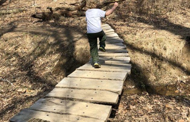 Boy on Trail