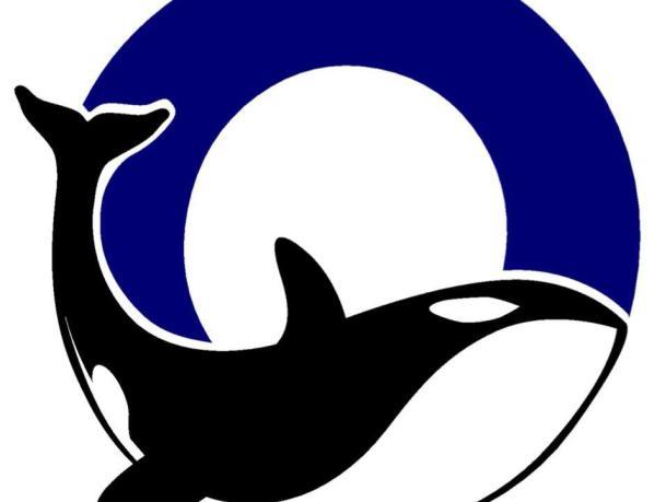 Orca Running