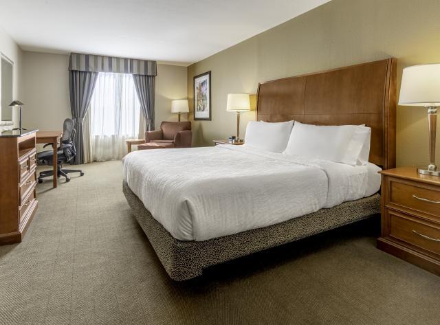 Hilton Garden Inn King Room