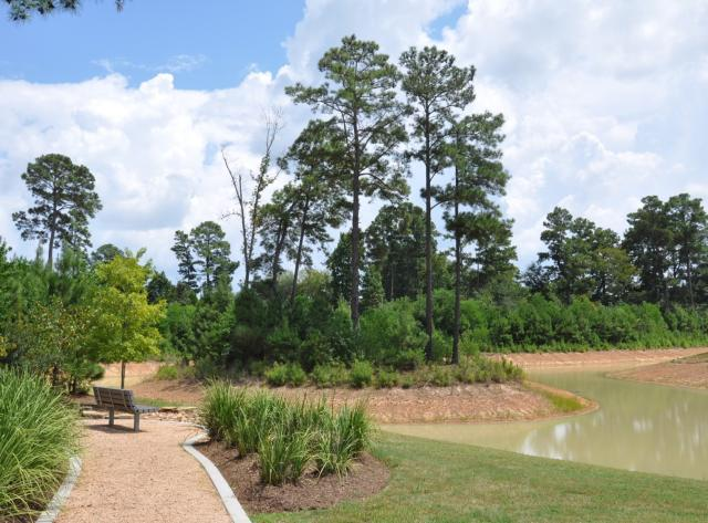 Monarch Park Pond and Seating Area