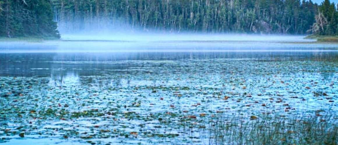 Blue misty canoe