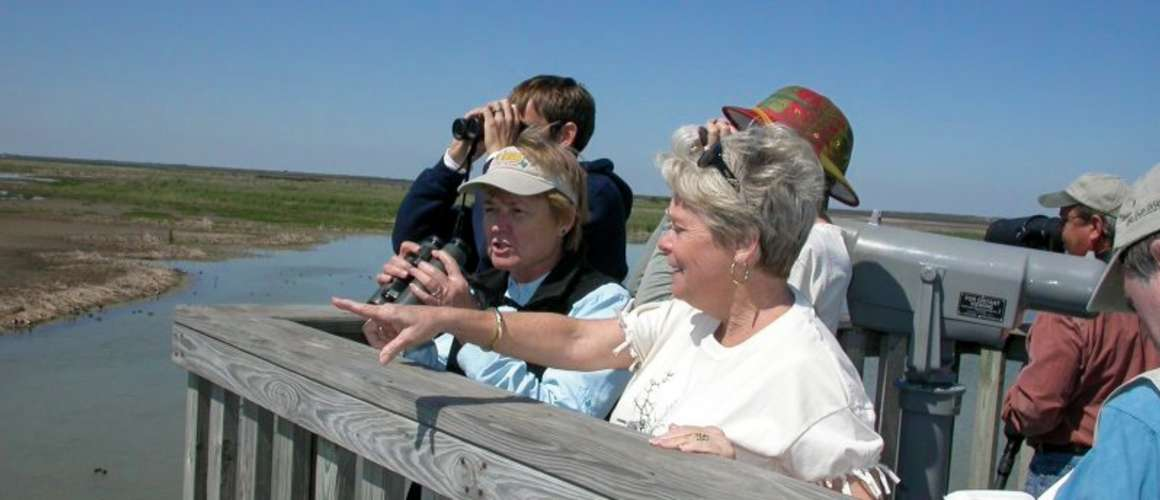 Birding at Leona Turnbull