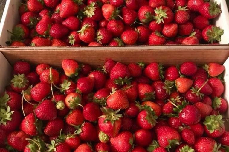 B&R Berries